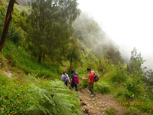 Hiking down the foot trails back to Cemoro Lawang