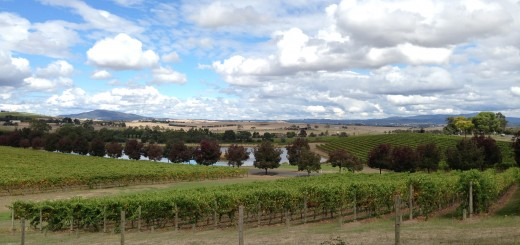 Vineyards of Yarra Glen