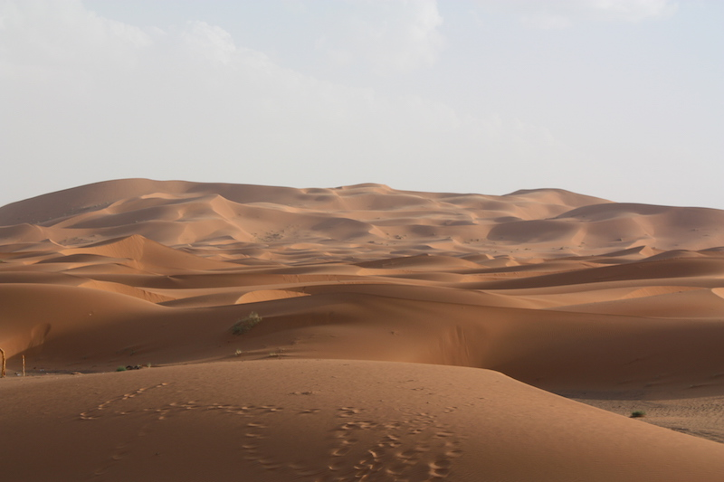 The endless sand dunes of Erg Chebbi