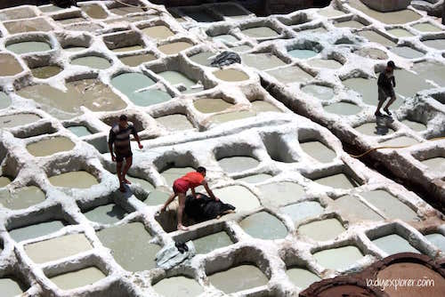 fes-tanneries-white