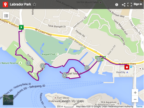Where To Run In Singapore Here Are Best Running Routes - Google maps jogging route