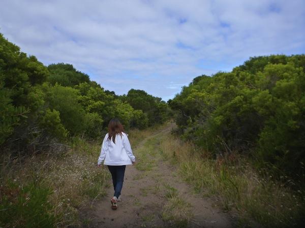 Bushwalking