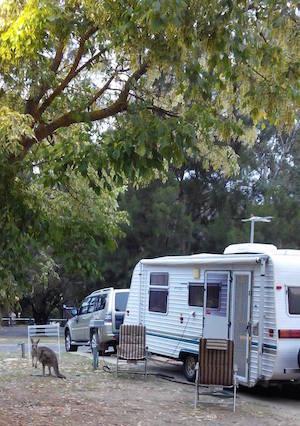 halls-gap-caravan-park