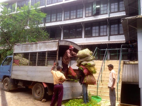 Tea-planters